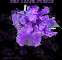 THE COLOR PURPLE by grandmajudie