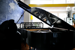 Steinway of a century by H4all