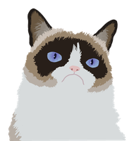 Grumpy Cat by SomeQueerArtist