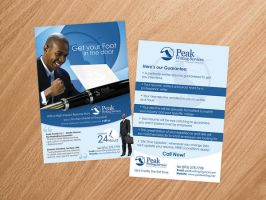 Peak Writing Services Flyer1 by artofmarc