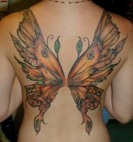 Fairy Wings in Autum Colors by catbones