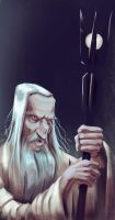 Saruman - The white by gabrielrubio