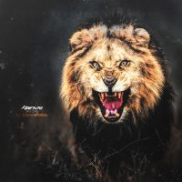 The Lion by Naif1470