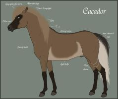 Cacador Reference Sheet by Paardjee