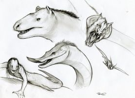 Various Creatures by RobtheDoodler