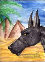 .:Son.of.the.Sands:. by Hatter2theHare