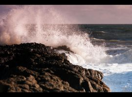 Oceans Alive by RaynePhotography