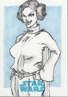 SKETCH CARD Princess Leia AP by jasinmartin