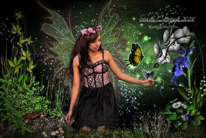 The Beauty In Faeries by SuzieKatz