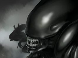 Aliens attack by Legallydead