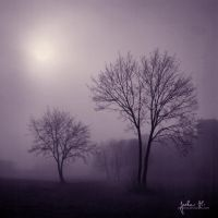 Lost In The Deep Morning by pelleron