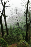 Pellines- Undergrowth painting by Nothofagus-obliqua