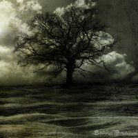 L'arbre by Schnitzelyne
