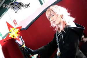 marluxia cosplay by YattaChan
