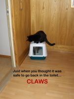 LOL - Claws Kitteh by sidneyeileen