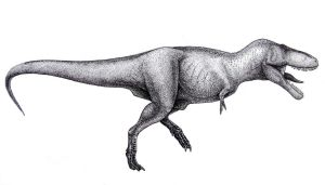 Tyrannosaurus rex- side view by T-PEKC