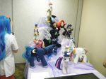 Collection of MLP Plushes by DestinyDecade