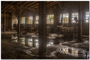 Abandoned Factory V by kiebitz