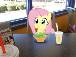 Lunch with Flutters by TokkaZutara1164