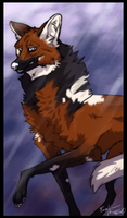 In The Rain - Ian maned wolf form by Esaki