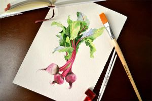 Watercolor beetroot by Rustamova