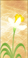 Fractal Manip Stock - Potted Daffodil II by rockgem