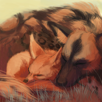 African Wild Dog and Fennec Fox by ZacharyWolf