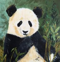 Giant Panda Bear by CarolynYM