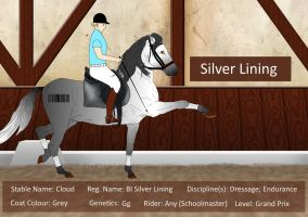 BI Silver Lining - Dressage Tack by HKW1994