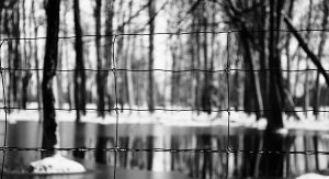 fenced in by right-angle
