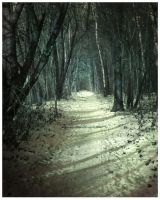 The Path of Arcady by Paik666