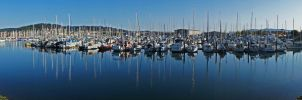 Bellingham Bay Boats by tundra-timmy
