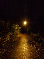Path Home by SrTw