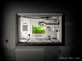 Life Outside by BlackHatGraphics