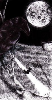 The Cat and The Crow by Gre... by BallpointPenClub