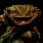 Bearded Dragon by Beholdentolove