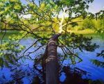 Huron River Oak 5 by PatrickBlakemore