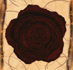 The Briar and the Rose by Morlothwen
