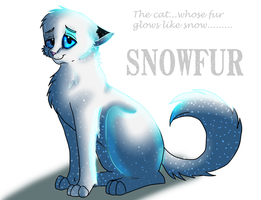 The cat whose fur glows like snow.... by BrittishKitsune