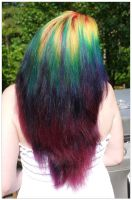 Rainbow Length by lizzys-photos