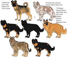 16 Way Mixed Breeds by Leonca