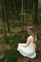 Maiden in the woods serie 5 by velourya-stock