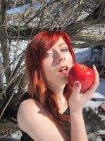 Apple 14 by Fluffybunny29stock