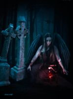 The Ruby and the Black Angel by annewipf