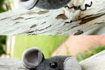 Mini Gray Mouse Plushie by Saint-Angel