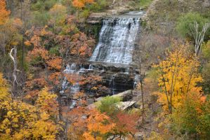 Mount Albion Falls by Gr8-Gatensby