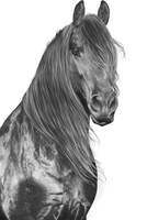 WIP: grayscale by feverpaint