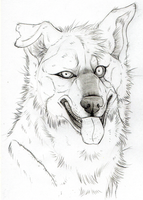 Larry Realism SKETCH by KasaraWolf