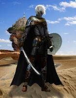 Sword and Shield Drow Warrior by Tanorax