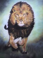 AFRICAN PREDATOR by ARTISTS99
